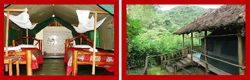 http://www.kenyawalk.com/images/body/Buhoma-camp.jpg